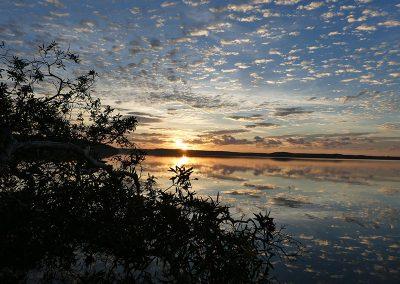 lake webya bushland reserve