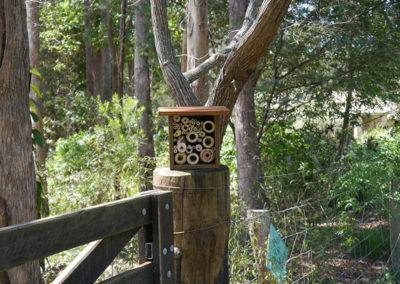 nest box for wildlife